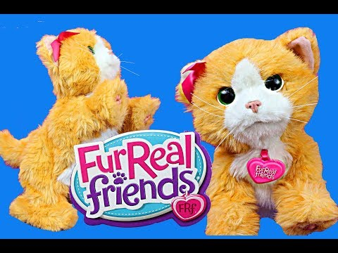 FurReal Friends Kitty Cat DisneyCarToys Daisy Pet Playing Cat Toy Review by Hasbro