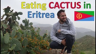 EATING CACTUS IN ERITREA!