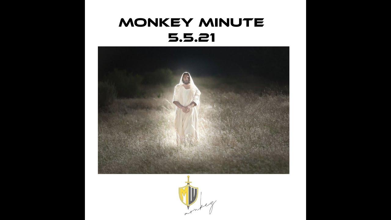 Monkey Minute 5 5 21