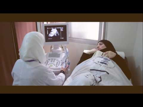 Pregnant and Lactating Women | UNFPA - WFP