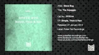 Steve Bug: The Arpeggio