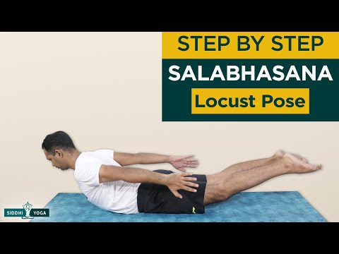 Locust Pose (Salabhasana Pose) Benefits, How to Do & Contraindications by Yogi Sandeep Siddhi Yoga
