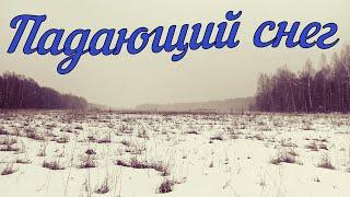 Падающий снег (Природа)