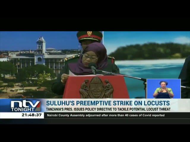 President Suluhu preempts damage locusts may wreck in Tanzania