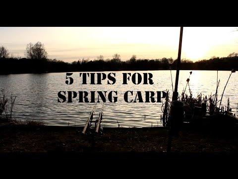 5 Tips For Spring Carp Fishing