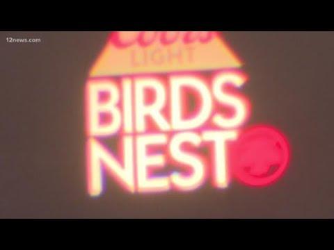 2019 Birds Nest concert lineup announced