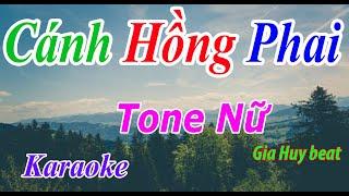 Cánh Hồng Phai - Karaoke - Tone Nữ - Nhạc Sống - gia huy beat