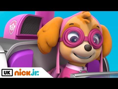 Paw Patrol | Pups Save the Cat Show | Nick Jr. UK