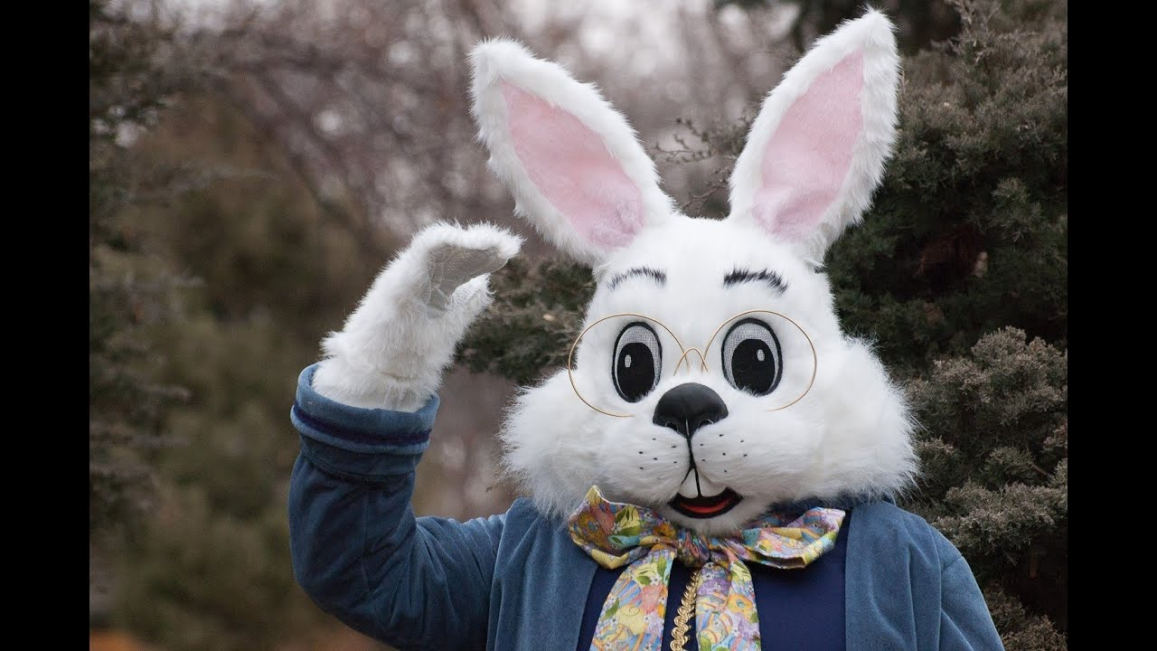 EASTER BUNNY CAUGHT ON CAMERA - YouTube