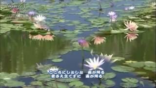 「こころ雨」 作詞:伊藤美和 作曲:徳久広司 歌:大江 裕 2016年3月9日...