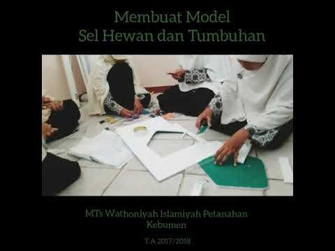 Membuat Model Sel Hewan dan Tumbuhan