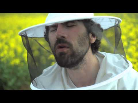 Gruff Rhys - Honey All Over (Official Video)