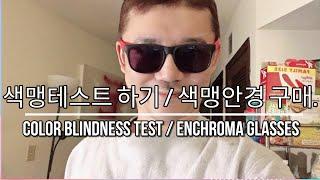 [미국 브이로그] 색맹 테스트 후기 | 색맹안경 구매 …