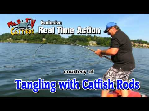 Tangling With Catfish Rods- My Go To Trophy Catfish Rods- Fishing Rod For Big Catfish