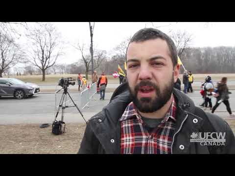 UFCW Canada supports striking faculty at York University