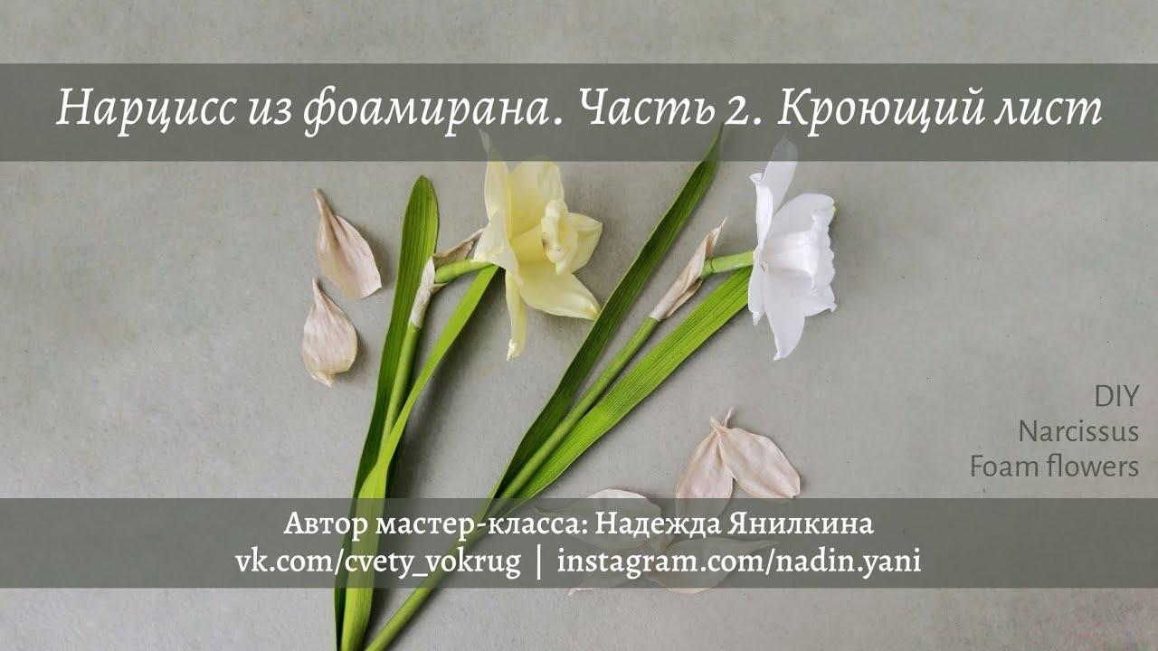 Нарцисс из фоамирана. Часть 2. Кроющий лист   Narcissus. Part2   Foam flowers   DIY
