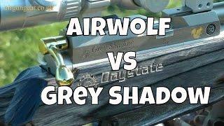 SHOOTOUT: Daystate Grey Shadow Vs Daystate Airwolf MCT - Air Rifle Test