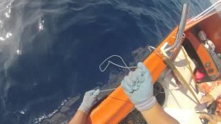 2014 ep 23 broken leader ahi yellowfin tuna fishing kona hawaii