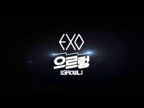 EXO Intro + Wolf + Growl remix