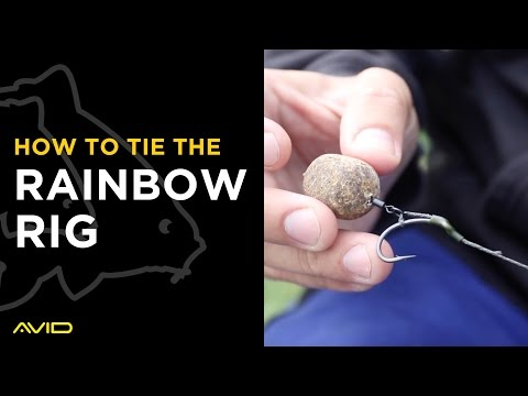 AVID CARP- How To Tie The Rainbow Rig