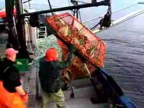 crab fishing in the Gulf of Saint Lawrence,Canada