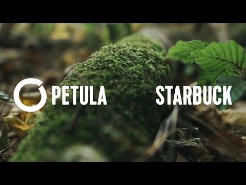 PETULA - STARBUCK Mp3