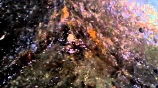 Бежит вода из под пола,в погребе(, 2016-04-12T16:06:43.000Z)