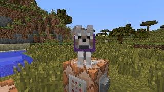 minecraft tutorial summon custom wolves