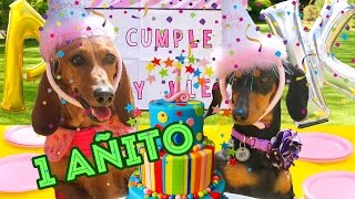 MY 1ST BIRTHDAY PARTY| LOS POLINESIOS VLOGS