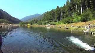 Pesca de Trutas em Seki