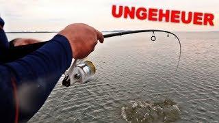 Angler weckt Ungeheuer auf!