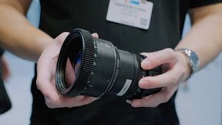 Everything You Need to Know About Anamorphic Lenses