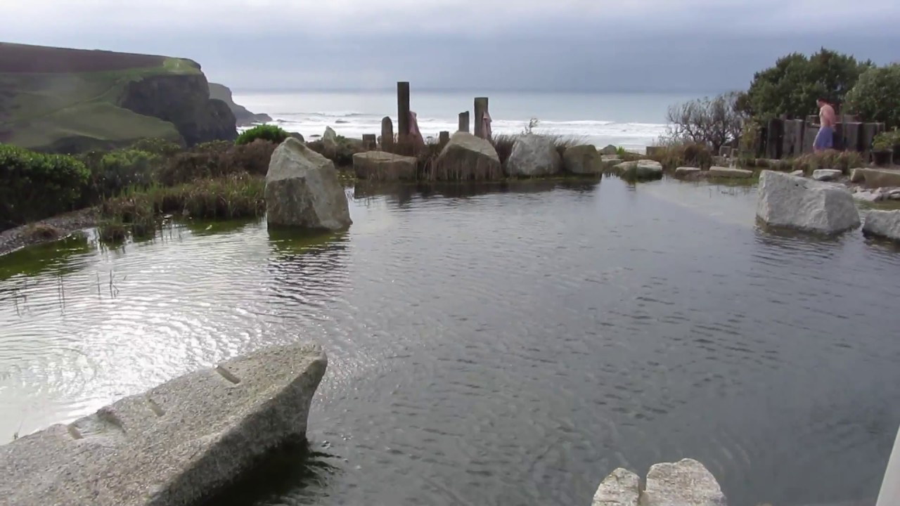 Fixing A Natural Swimming Pool With Algae Youtube