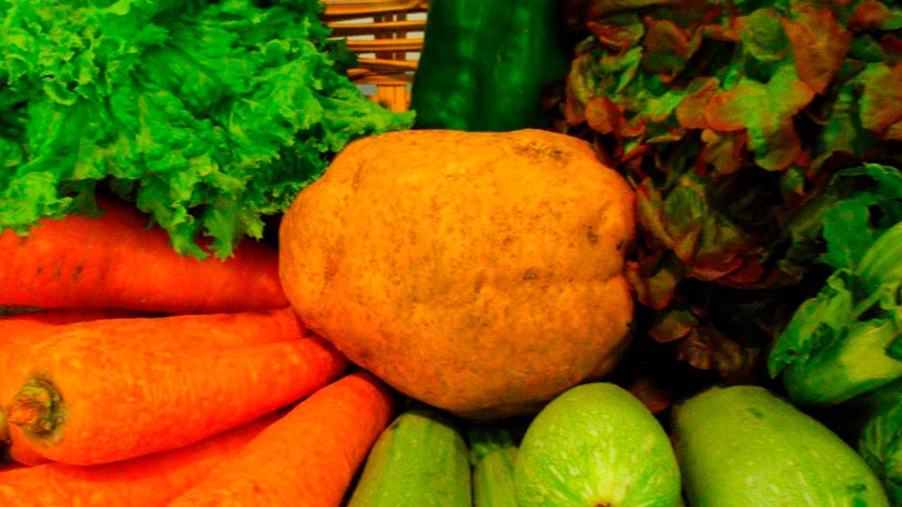 alimentos prohibidos en acido urico alimentos para ayudar a bajar el acido urico acido urico creatinina altos