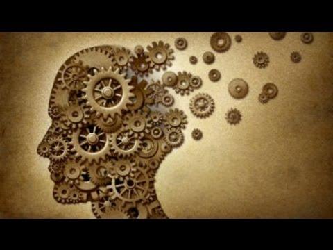 Зарядить память. Что помогает работе мозга, а что — только вредит