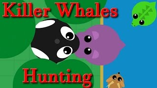 Mope.io all animal || Hippo hunter of  Killer Whales