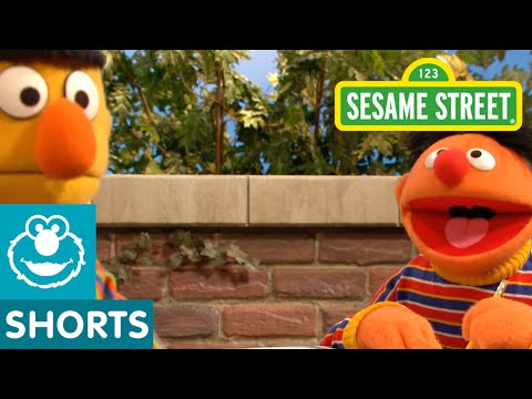 Sesame Street: Bert And Ernie's Science Experiment
