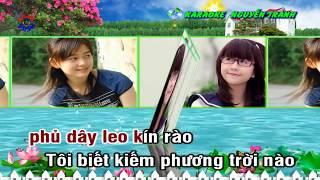 [Karaoke] Tí Ngọ Của Tôi - Trường Vũ