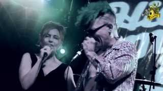 """▲Hillbilly Moon Explosion & Sparky """"My love for evermore"""" Live - High quality sound and video"""