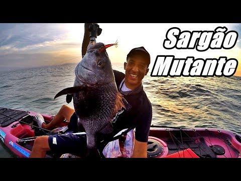 Pescaria de Caiaque