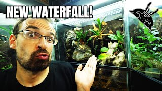 WATERFALL for VAMPIRE CRABS!