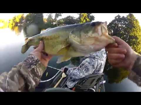 Catches From The Bass Raider - Fairy Lake