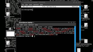 how to execute a python script in linux by just double clicking on the script