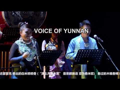 THE VOICE OF YUNNAN