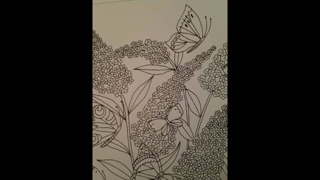 The coloring book of cards and envelopes flowers and butterflies - Coloring Book Of Cards Envelopes Flowers Butterflies