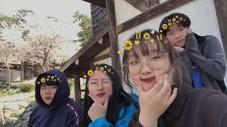 [열번째 도시락, 봄꽃 창작 축제!] 시은조 작품 영상
