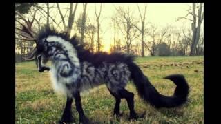 фантастические животные