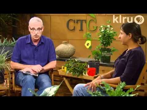 Central Texas Gardener|May 21, 2011