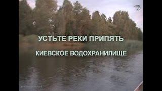 Domantove устье реки Припять Киевское водох. рыбалка и отдых