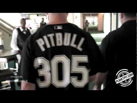 Pitbull  305 Till I Die